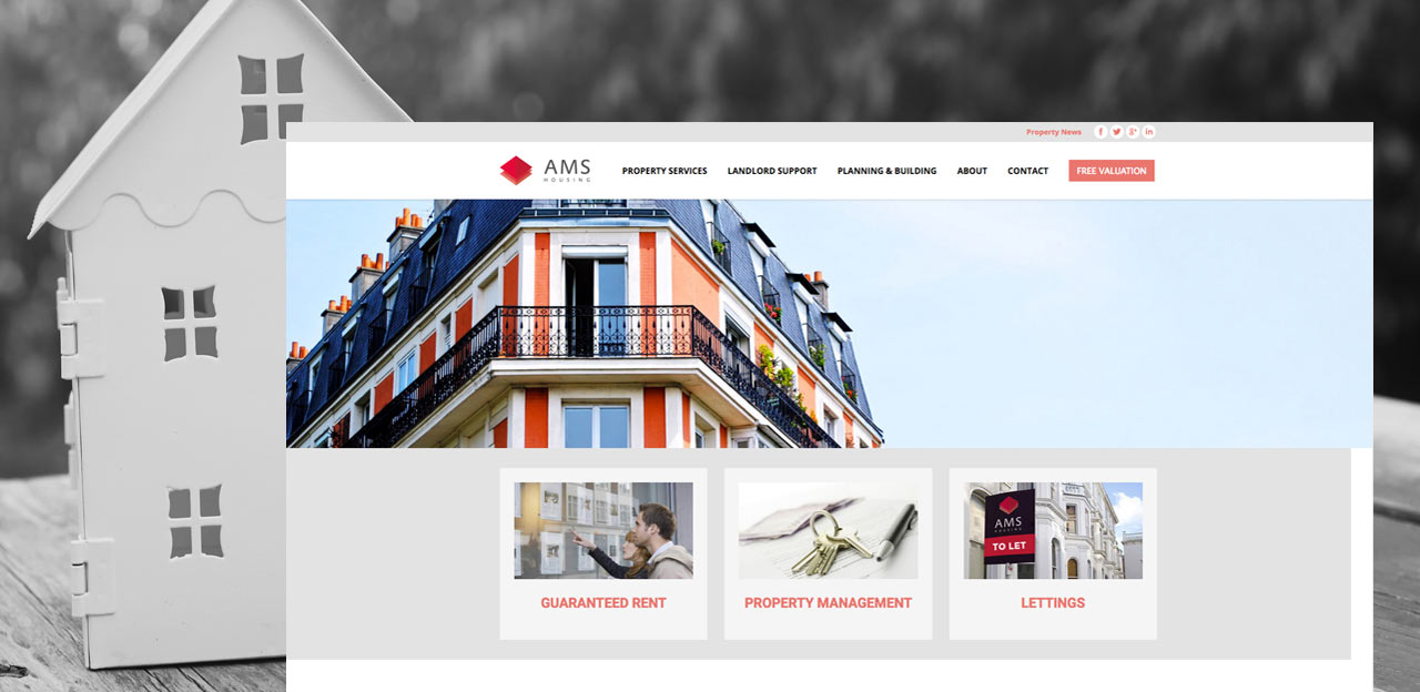 ams housing group website